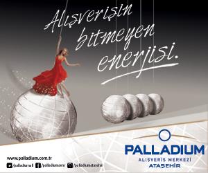 palladium-300x250-Banner